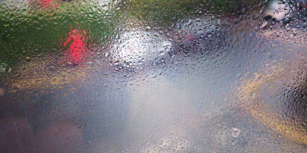 Reflections_WEB-11